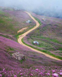دانلود پروژه عکاسی طبیعت رودبار گیلان
