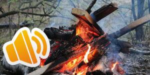 دانلود پروژه افکت صوتی صدای طبیعت (آتش , پرنده , شب , هیزم)